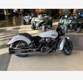 2021 Indian Scout for sale 201052806