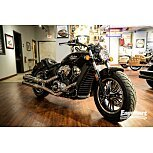 2021 Indian Scout for sale 201073448