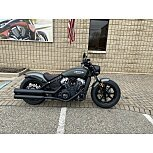 2021 Indian Scout for sale 201077376