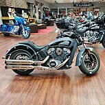 2021 Indian Scout for sale 201079059