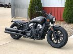 2021 Indian Scout for sale 201081178