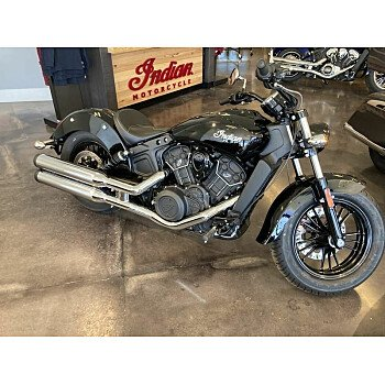 2021 Indian Scout for sale 201088277