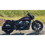 2021 Indian Scout for sale 201099971