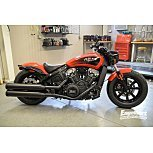 2021 Indian Scout for sale 201161124