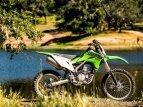 2021 Kawasaki KLX300R for sale 200983736