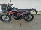 2021 SSR XF250 for sale 201055519