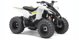 2021 Yamaha YFZ450R 50 specifications