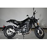 2022 Benelli Leoncino for sale 201152665