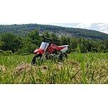 2022 Honda CRF50F for sale 201163739