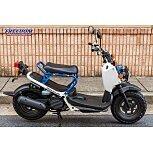 2022 Honda Ruckus for sale 201165112