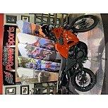 2022 Kawasaki KLR650 for sale 201170889