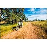2022 Kawasaki KLX300R for sale 201163581