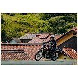 2022 Kawasaki W800 for sale 201183335