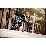 2022 Kawasaki Z900 for sale 201182655