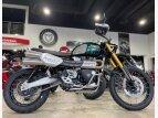 2022 Triumph Scrambler for sale 201111758