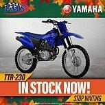 2022 Yamaha TT-R230 for sale 201176098