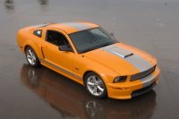 Shelby Mustang Buyer's Guide: 2006-2011