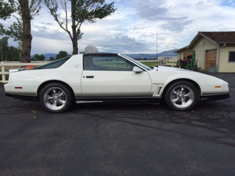 30+ 1984 Pontiac Firebird Brown