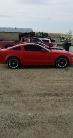 2007 Ford Mustang GT Coupe for sale 100773245