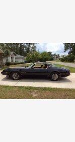 1981 Pontiac Firebird Trans Am Turbo Special for sale 100787720