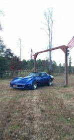 1981 Chevrolet Corvette for sale 100827326