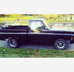 1979 GMC C/K 1500 for sale 100869140