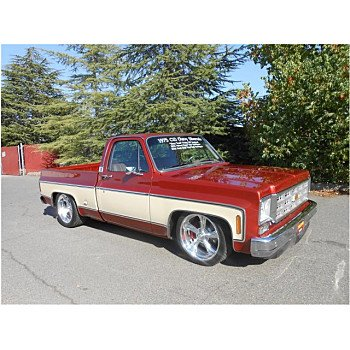 1975 Chevrolet C/K Truck for sale 100912776