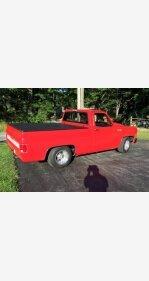 1979 Chevrolet C/K Truck for sale 100966815