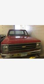 1979 Chevrolet C/K Truck for sale 100987130