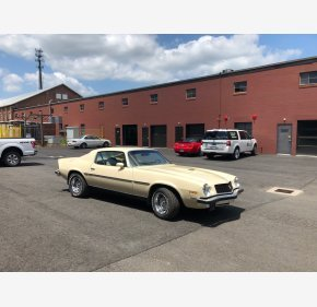 1974 Chevrolet Camaro LT Coupe for sale 101002124