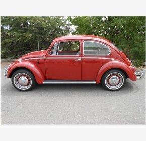 1966 Volkswagen Beetle for sale 101004689
