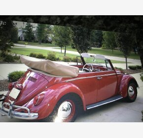 1965 Volkswagen Beetle Convertible for sale 101010381