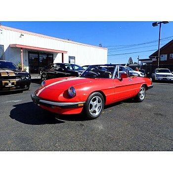 1983 Alfa Romeo Spider for sale 101036412