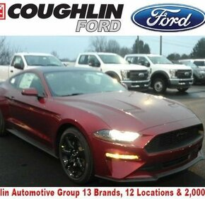 2019 Ford Mustang Coupe for sale 101049558