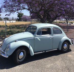 1964 Volkswagen Beetle for sale 101095241