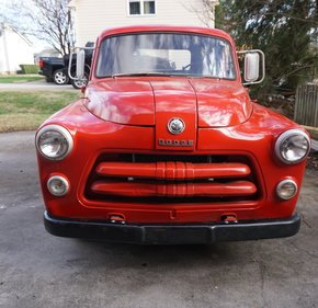 1954 Dodge C-1 for sale 101098536
