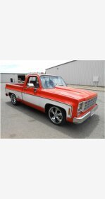 1978 Chevrolet C/K Truck for sale 101106460