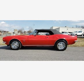 1967 Chevrolet Camaro for sale 101110365
