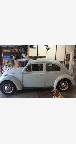 1964 Volkswagen Beetle for sale 101113550
