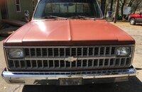 1982 Chevrolet C/K Truck 2WD Regular Cab 2500 for sale 101121525