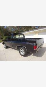 1979 Chevrolet C/K Truck for sale 101128946