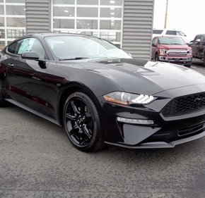 2019 Ford Mustang Coupe for sale 101132413