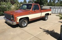 1976 Chevrolet Other Chevrolet Models for sale 101136491