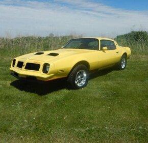 1976 Pontiac Firebird for sale 101146356