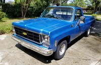 1978 Chevrolet C/K Truck 2WD Regular Cab 1500 for sale 101146936