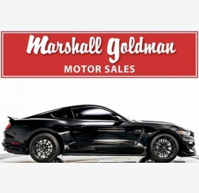 2017 Ford Mustang Shelby GT350 Coupe for sale 101150341