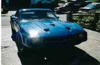 1969 Ford Mustang Cobra Coupe for sale 101154122