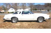 1979 Ford Thunderbird for sale 101160818