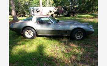 1978 Chevrolet Corvette for sale 101170496