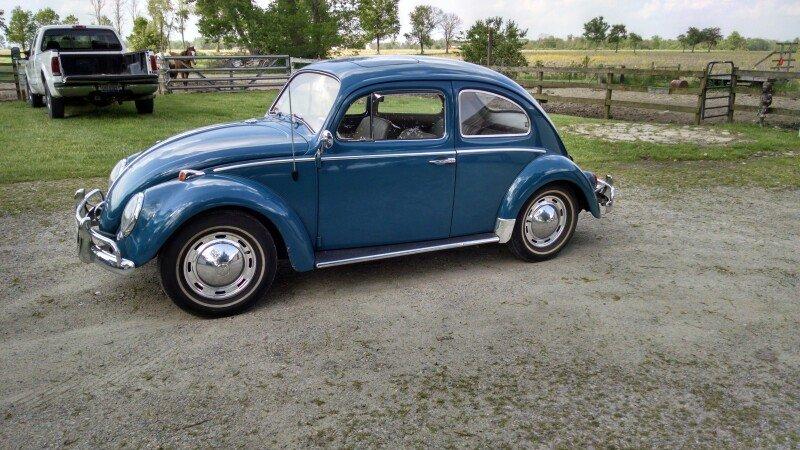 1964 Volkswagen Beetle Classics for Sale - Classics on